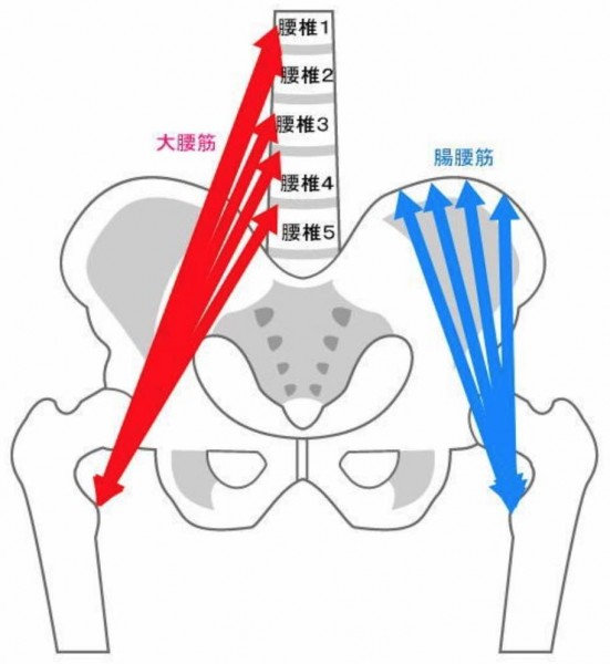 股関節屈筋群拘縮