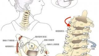 頚椎回旋動き